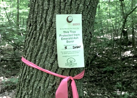 Blog « Vermont Family Forests